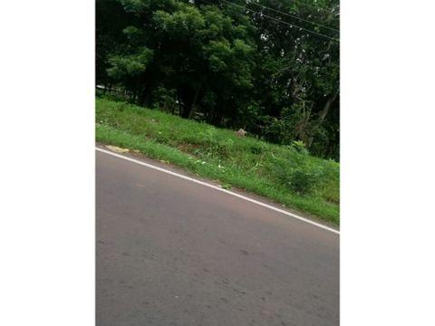lote a orilla de carretera en la chorrera