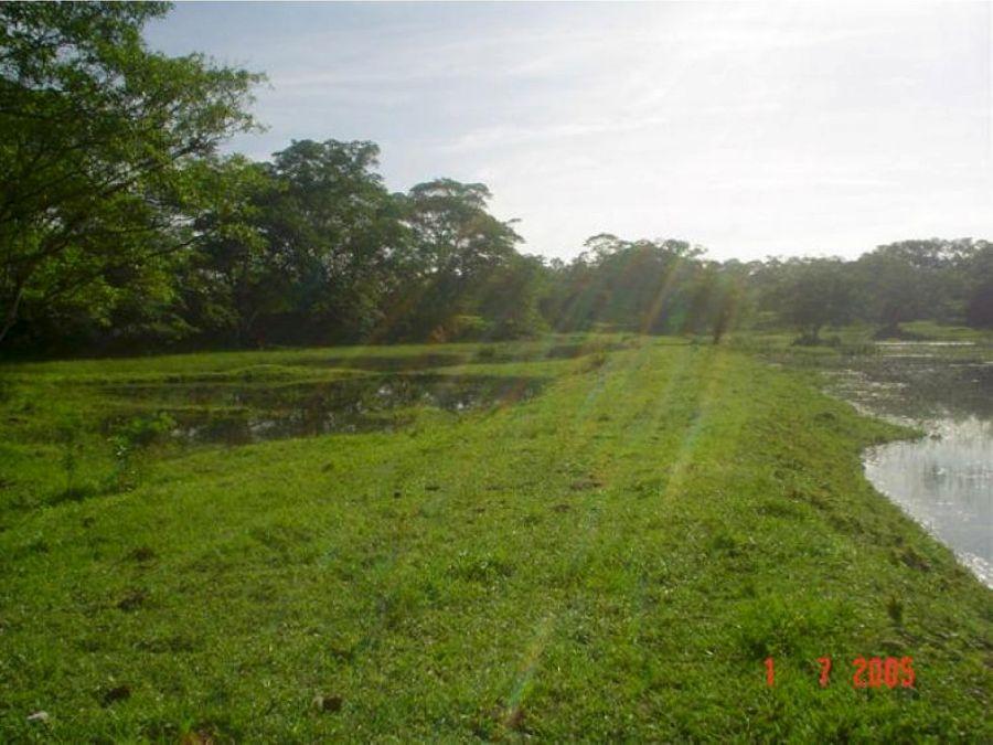 venta rancho a 12km zona arqueologica palenque