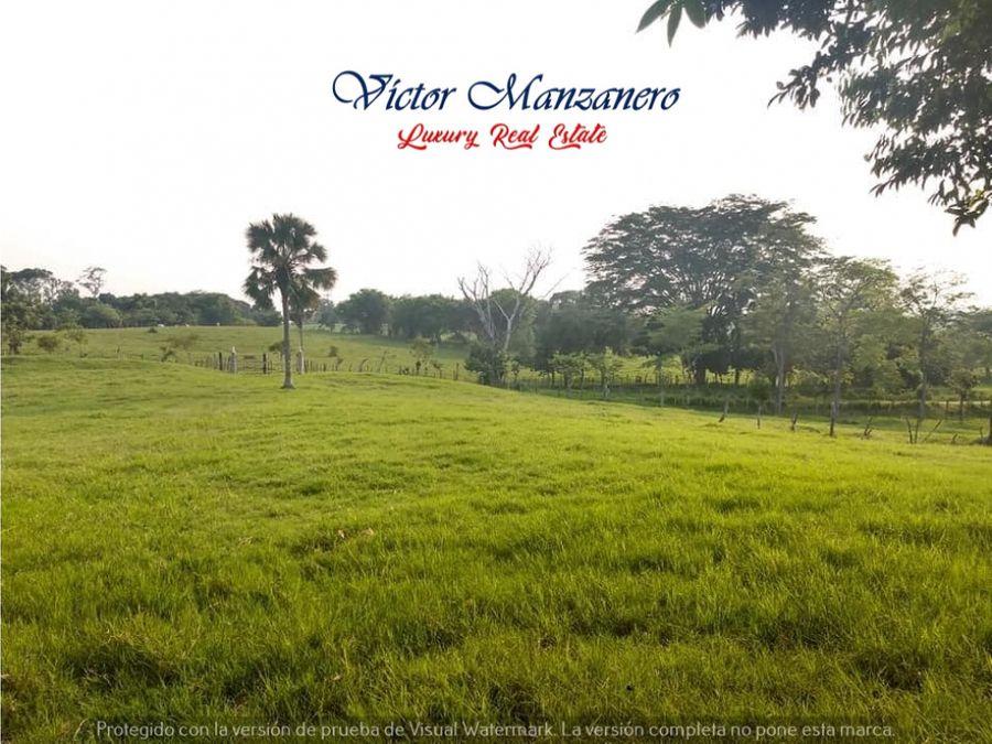 16 has rancho ganadero en venta carretera villahermosa macuspana