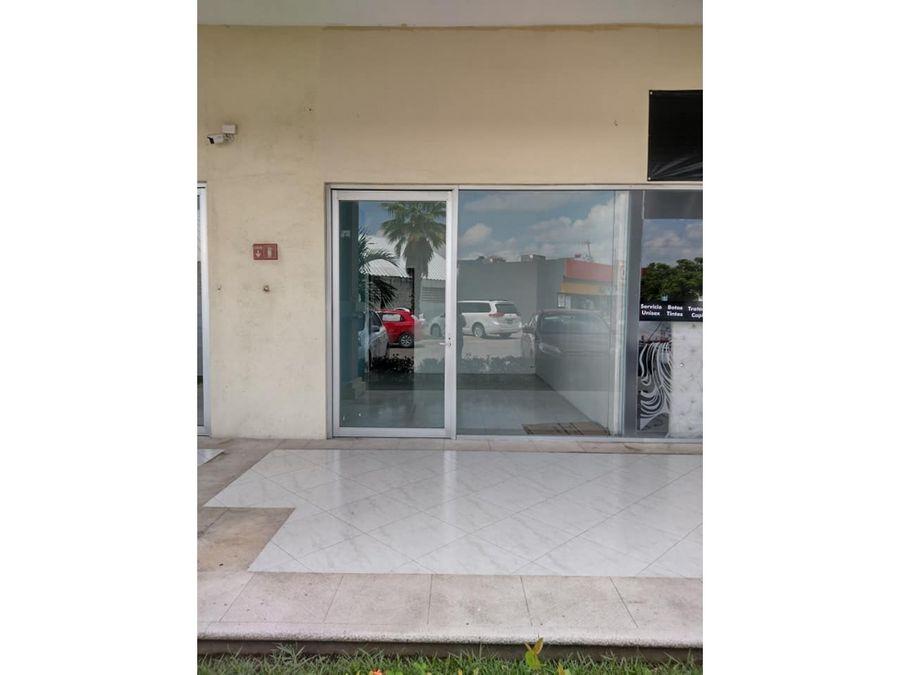 renta plaza terranova local 7b