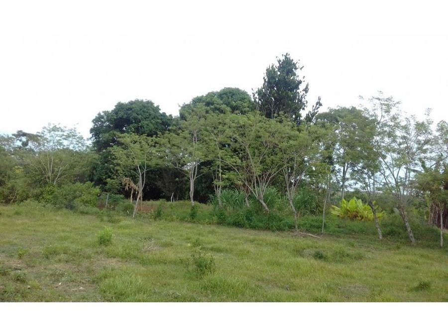 venta rancho 114ha palenque