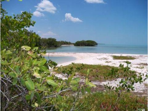 isla en venta 186 has 4000 m playa campeche