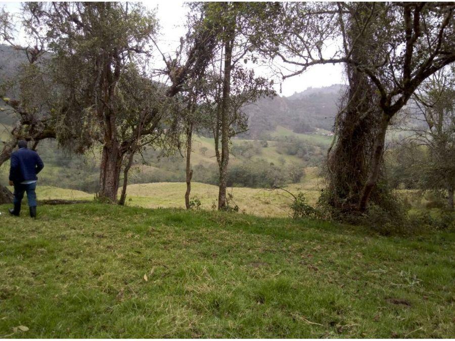 lote 7 fanegadas cerca laguna guatavita