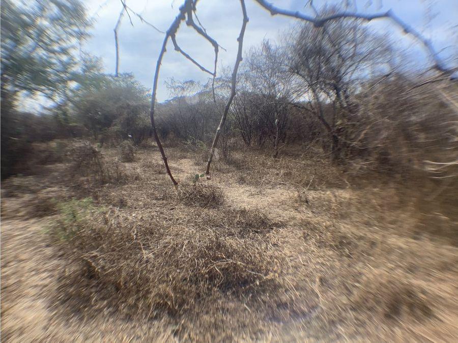 terreno en venta en miacatlan morelos escriturado