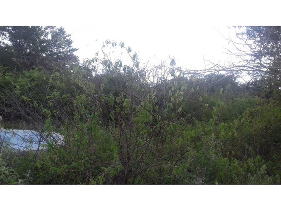 terreno en privilegiada ubicacion merida yuc