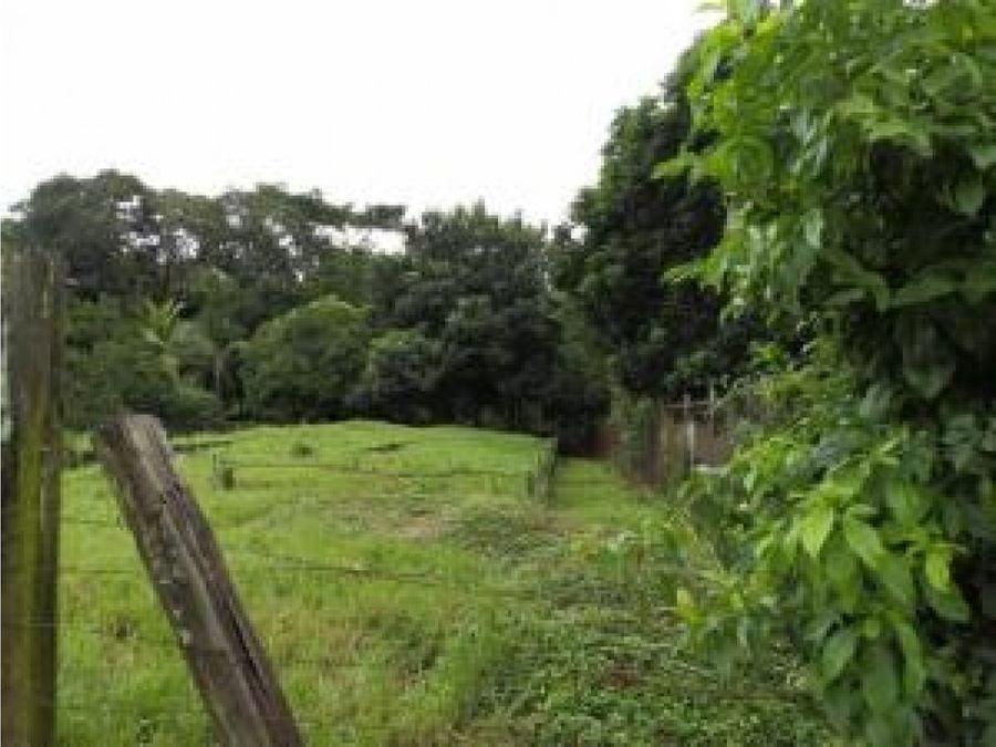 terreno en venta chorrera pp19 414