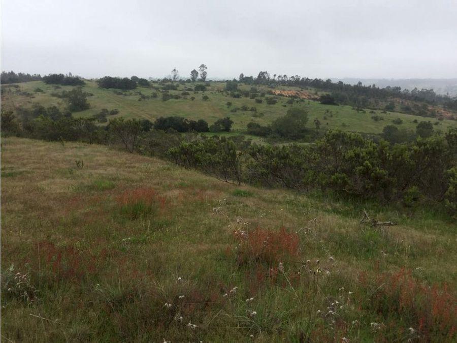 sitio o terreno agricola en lo venegas san jose