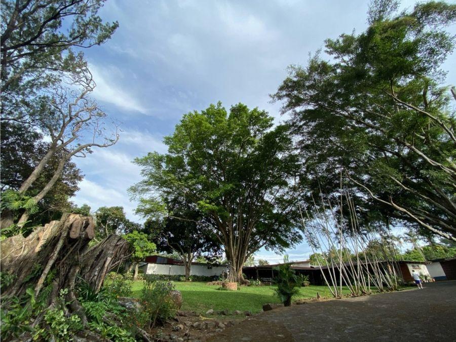 farm for sale in alajuela