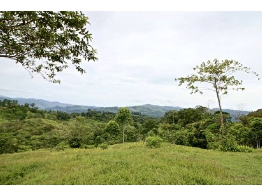 costa rica farm for sale
