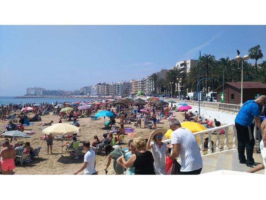 torrevieja playa y paseo maritimo