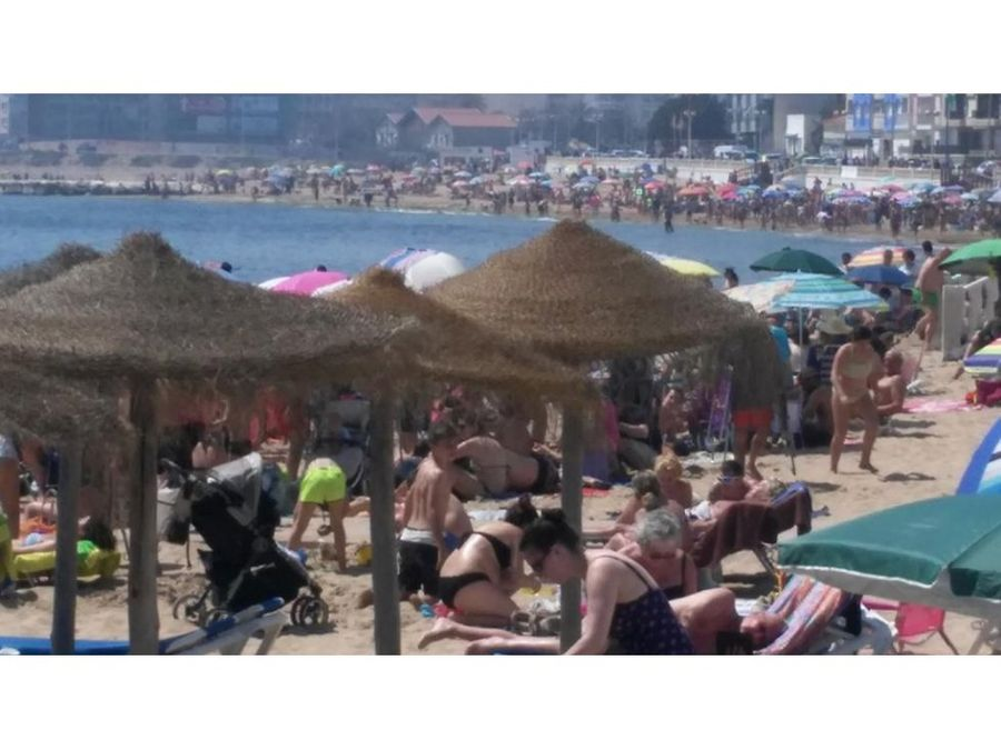 torrevieja a 2 playas cura y locos