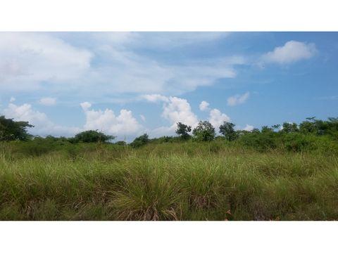 se vende terreno 2000m2 el paraiso
