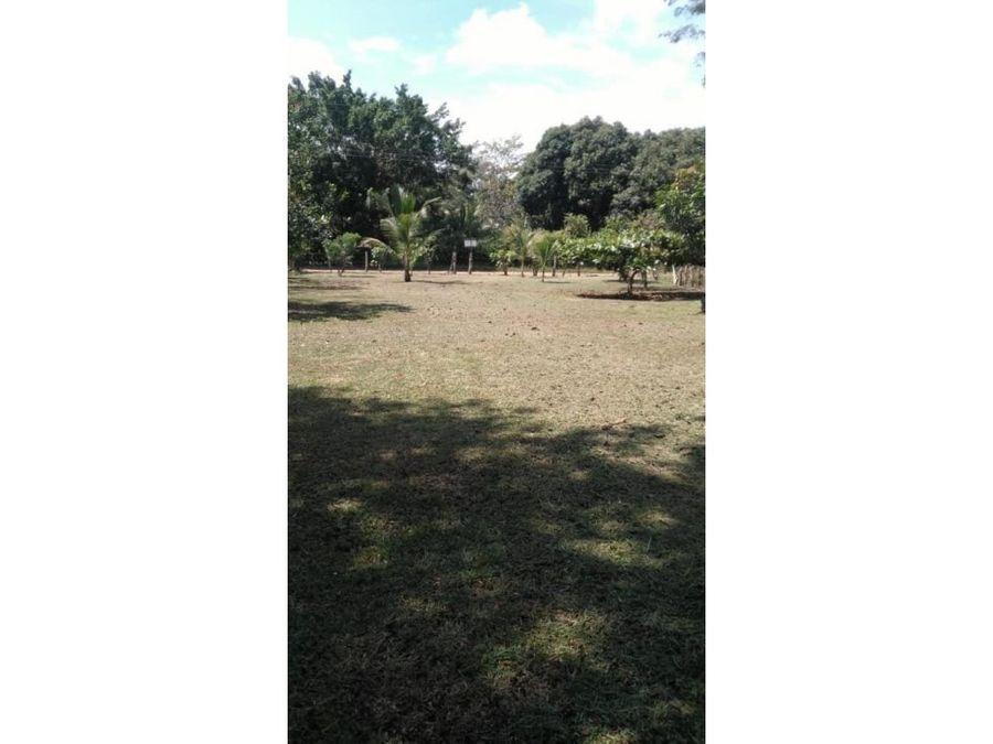 venta de lote alajuela orotina cascajal