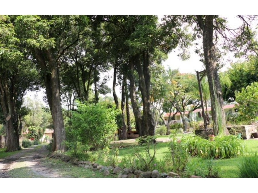 renta casa en floresta