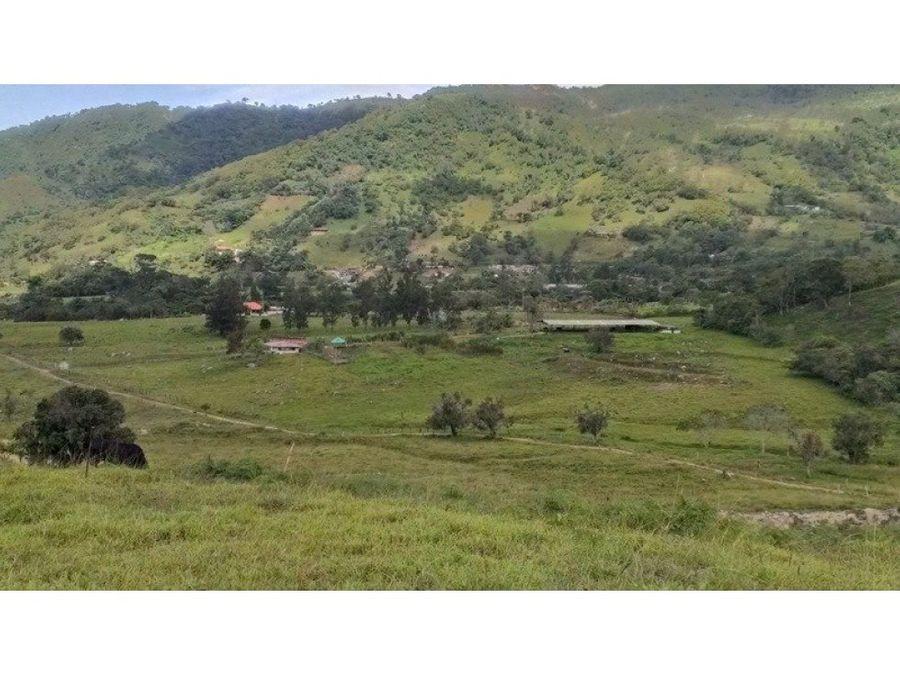 vendo finca plana central en chinacota