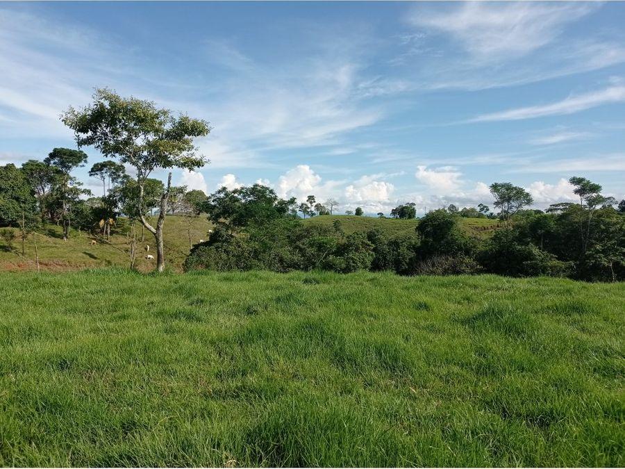 finca ganadera amplia en el magdalena medio antioqueno