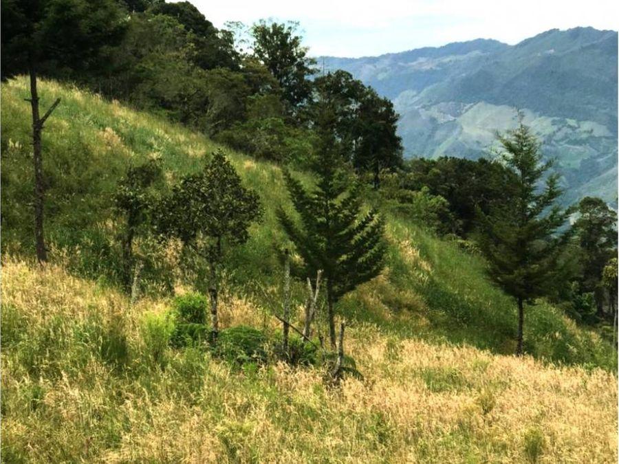 finca mediana apta para cultivos de altura