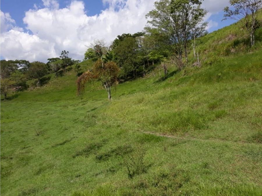 finca ganadera en el magdalena medio