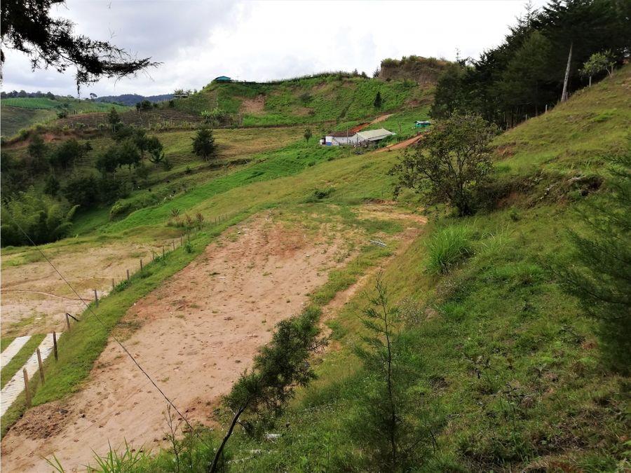 venta de lote en san vicente sector la floresta