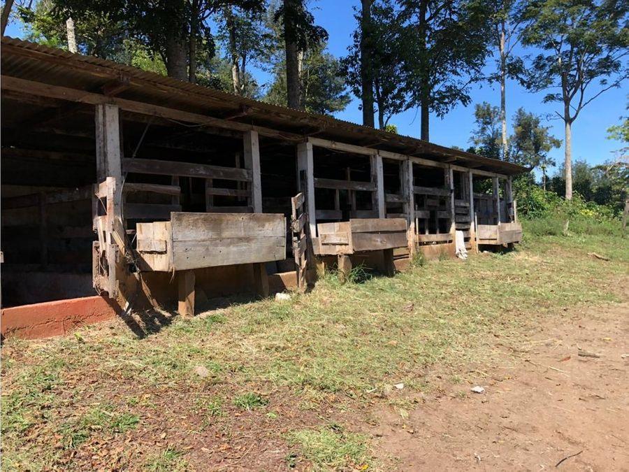 vendo 20 manzanas de terreno en aldea chichimecas