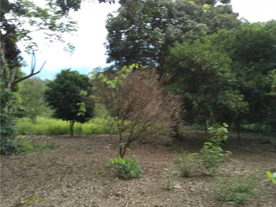 lote terreno en venta en san jeronimo antioquia colombia