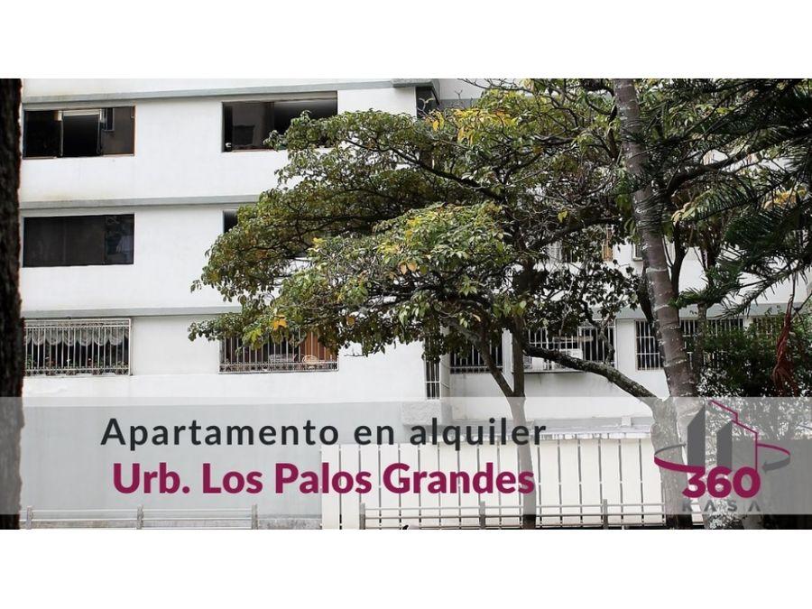 apartamento para alquilar en los palos grandes