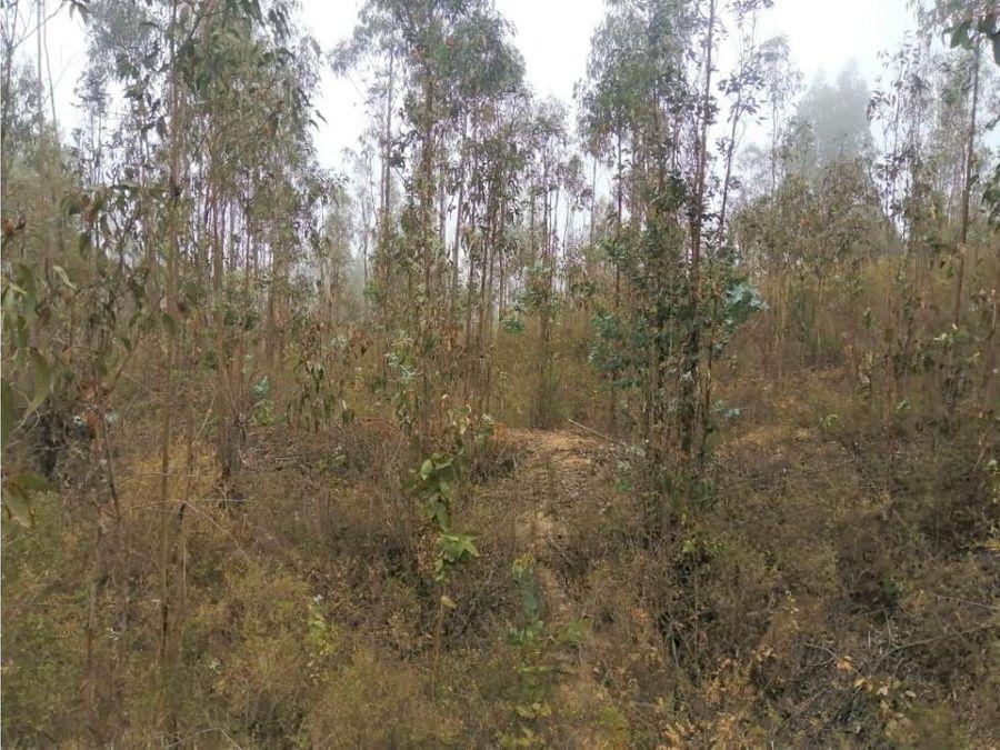 valparaiso placilla de penuelas terreno plano