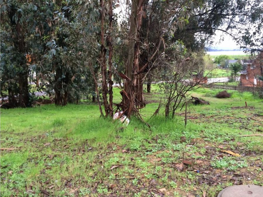 lib bernardo ohiggins las cabras el manzano