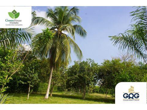 green house 8 candados lotes campestres en arjona bolivar