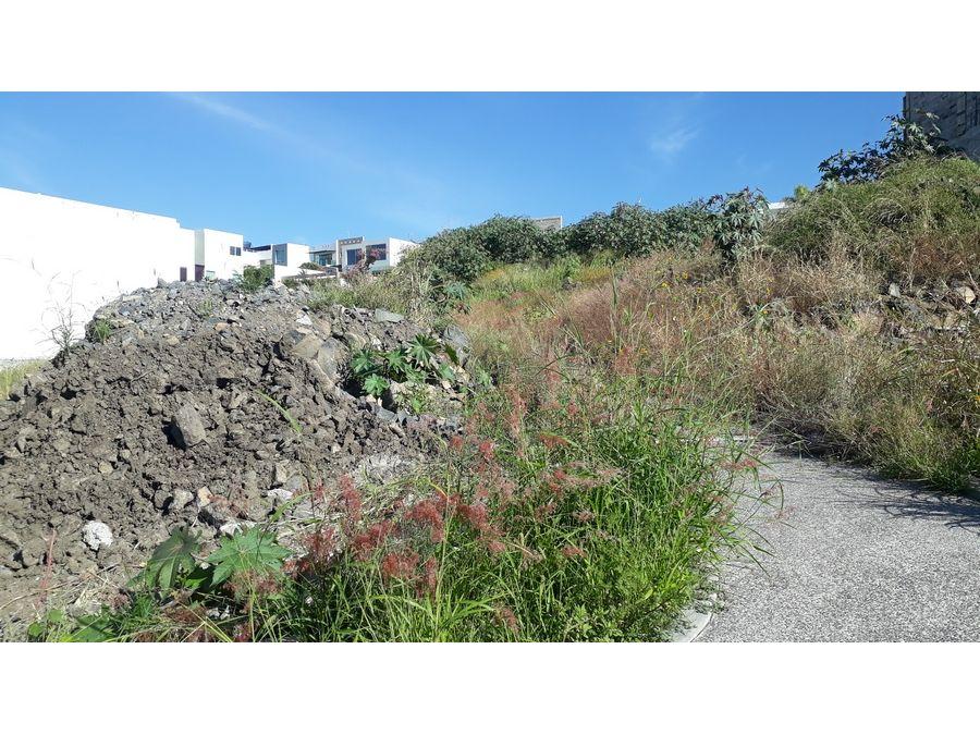 terreno en venta en burgos bugambilias 461m2 l65
