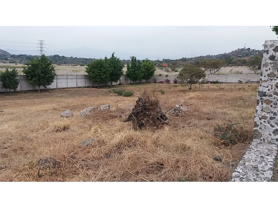 terreno en venta en real de tezoyuca l9 1535 m2