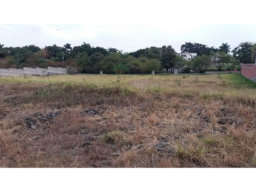 terreno en venta en real de tezoyuca l12 1113 m2