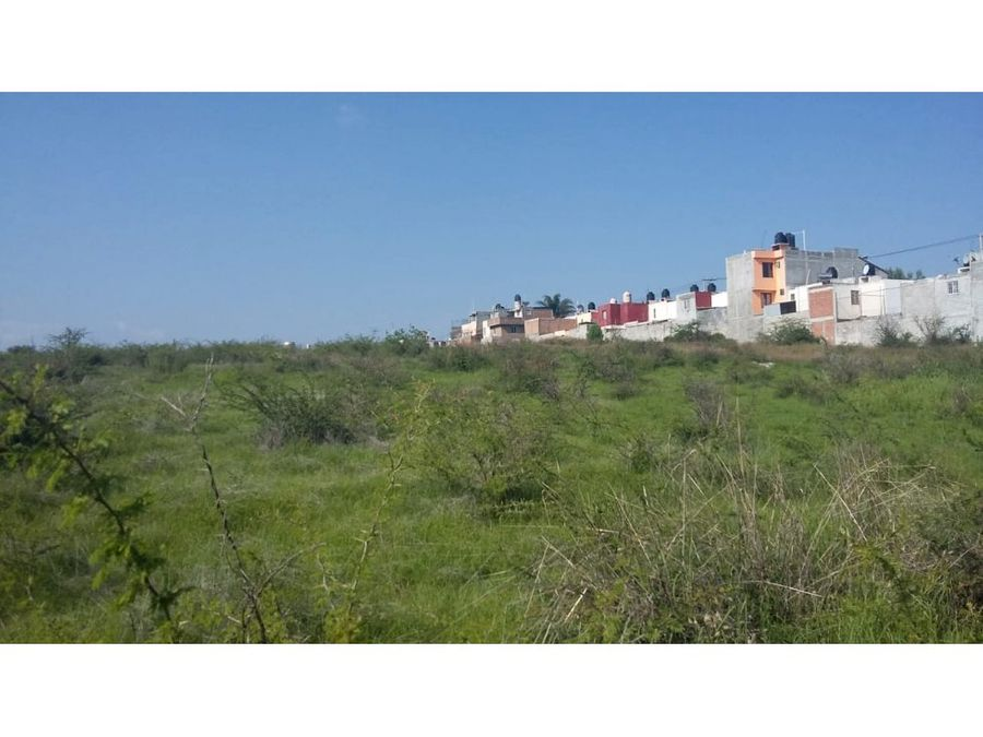 remate 63 hectareas colindan campestre erandeni
