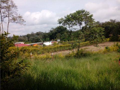parcela en venta genagra popayan 1200 mt2