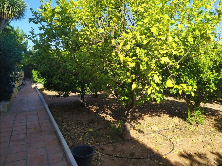 venta villa lujo pinos alhaurin