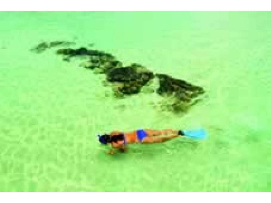 venta isla blue dolphin bocas del toro