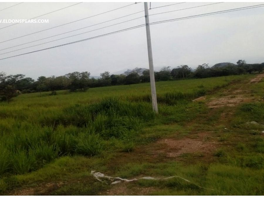 venta terreno de 13 hectareas cerca de penonome