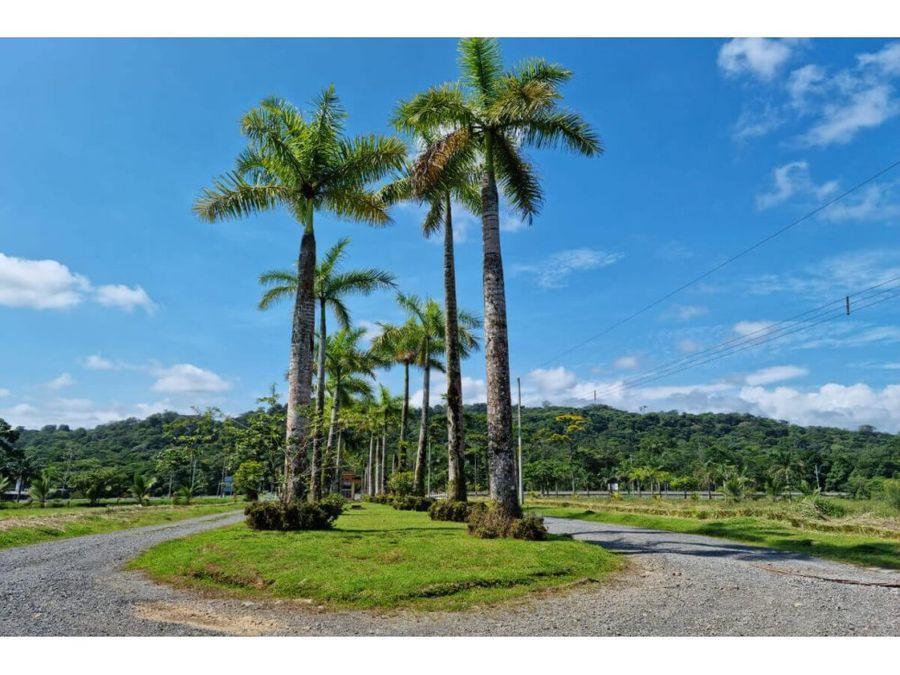 venta de lote en residencial quintas de corinto guapiles
