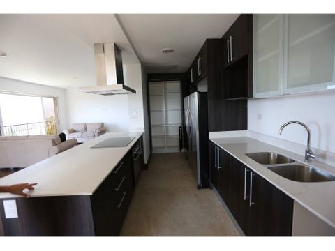 penthouse en guayabos curridabat ad