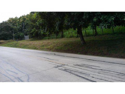 venta guanacaste 2 hectareas carretera al tempisque
