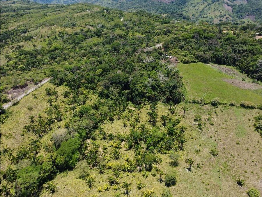 en venta finca de 53 hectareas en clavera de buenos aires