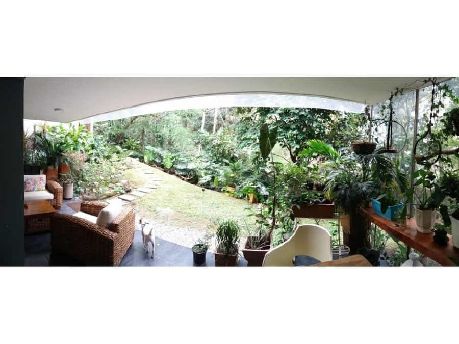 cozy apt w relaxing green view in el poblado