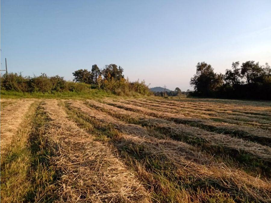 rancho agricola y ganadero tlalnepantla morelos