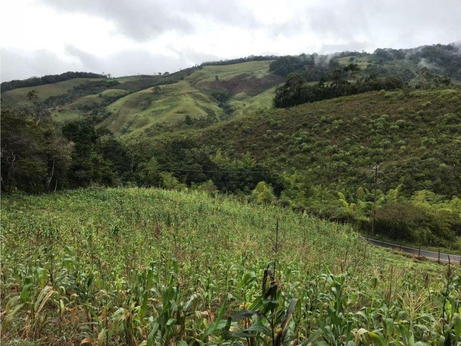 lote bosques de calima vip restrepo