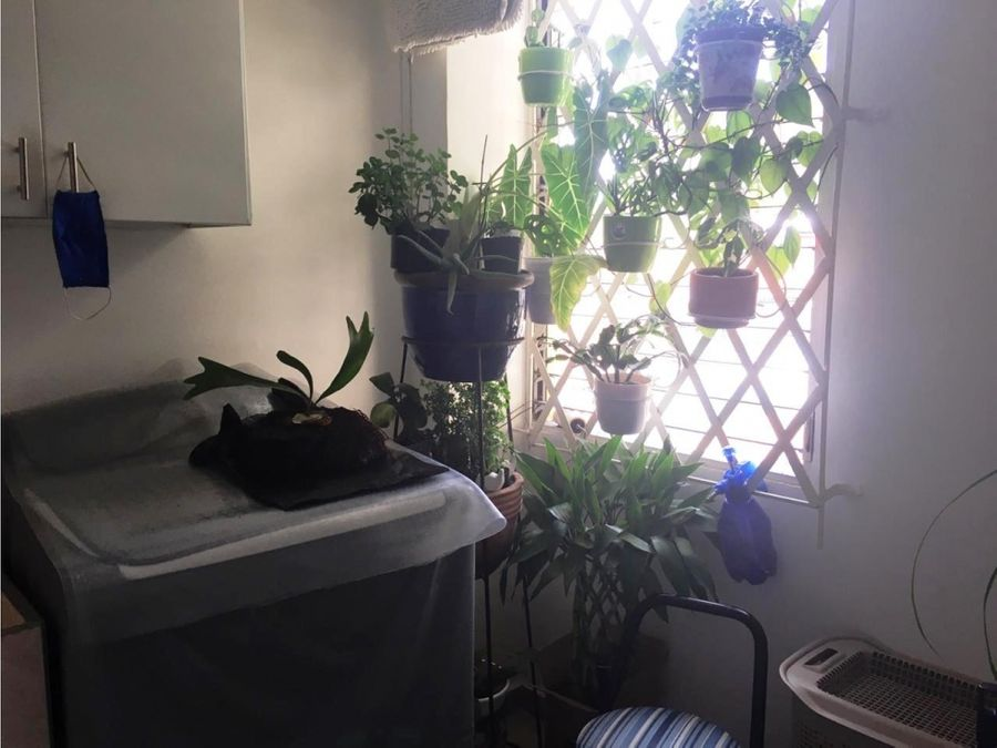 apartamento chipichape