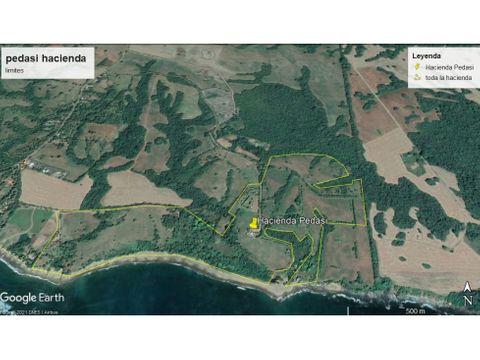 hacienda en venta pedasi panama 205 hectareas