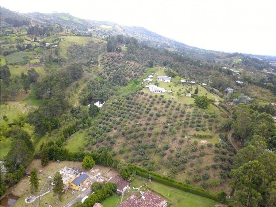 guarne 10 hectareas para desarrollo de proyectos