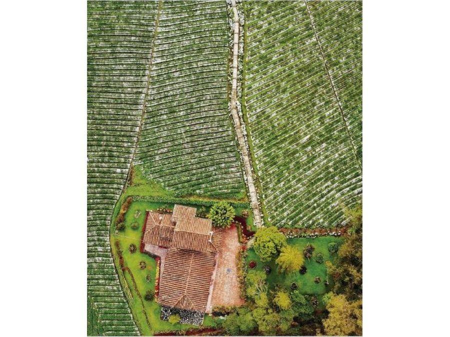 finca en venta santa elena antioquia produccion cultivos 19800m2