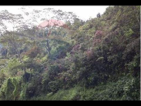 lote en venta en copacabana via med bog