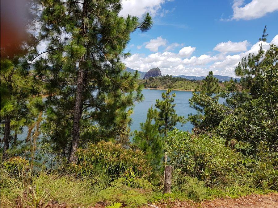 lote con acceso a la represa guatape vereda aguaceritos